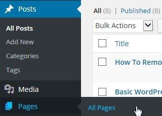 Posts or Pages ‹ WordPress Manuals