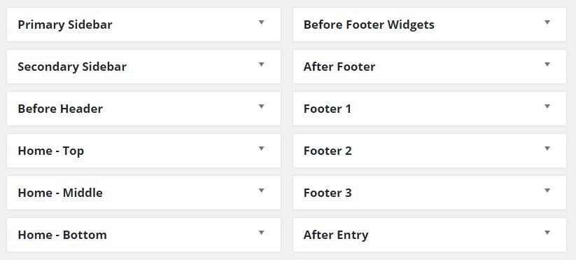 Daily Fish Pro Theme Widgets Area's for WordPress Manuals