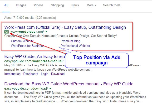 Buying a Nr 1 Google position via Ads Campaign